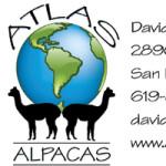 Atlas_Alpacas_bc_front-preview