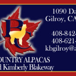 bc_biz_card_front-final-preview