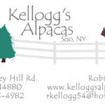 kelloggs_biz_card_front3-preview