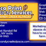 ppd_biz_card_front-preview